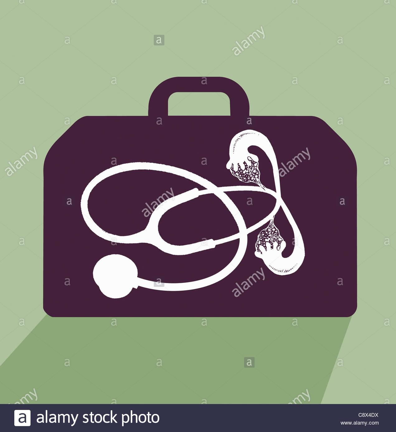 Estetoscopio con las trompas de falopio en maletín Imagen De Stock