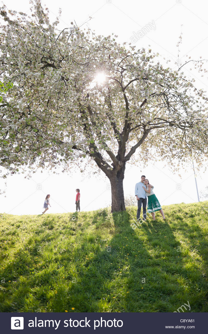 Jugando bajo el árbol familiar al aire libre Imagen De Stock