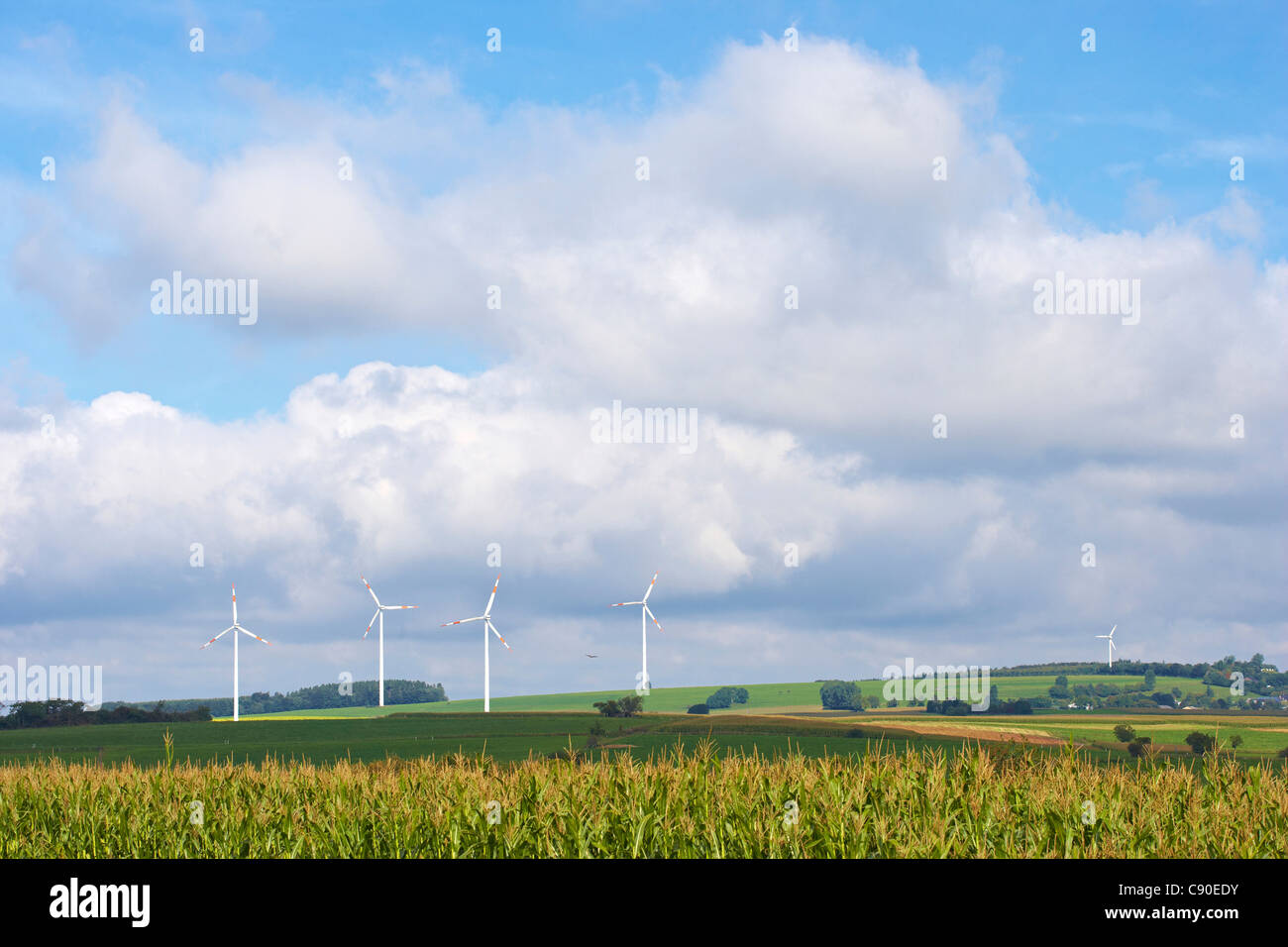 La energía eólica cerca Seinsfeld, Eifel, Renania-Palatinado, Alemania, Europa Imagen De Stock