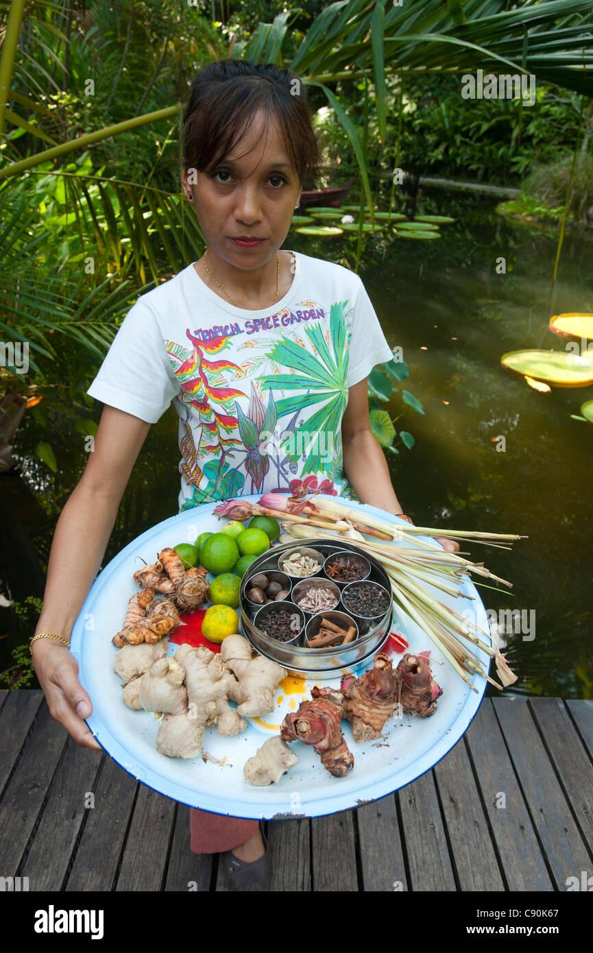 Mujer sosteniendo un plato con selección de especias, jardines de especias, Penang, Malasia, Asia Imagen De Stock