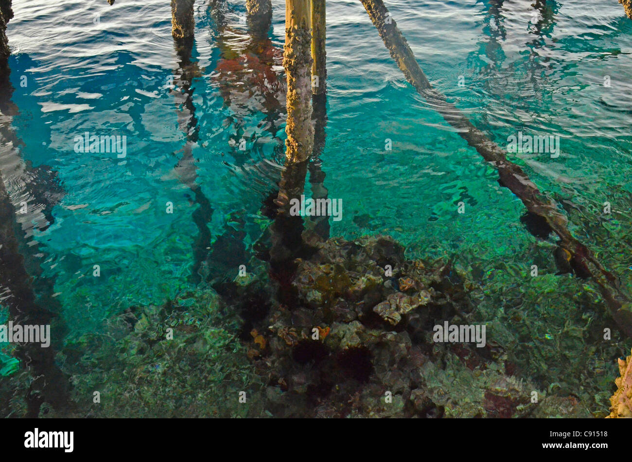 Agua azul bajo el embarcadero Kri Eco Resort, Raja Ampat islas de Papua Occidental en el Océano Pacífico, Imagen De Stock