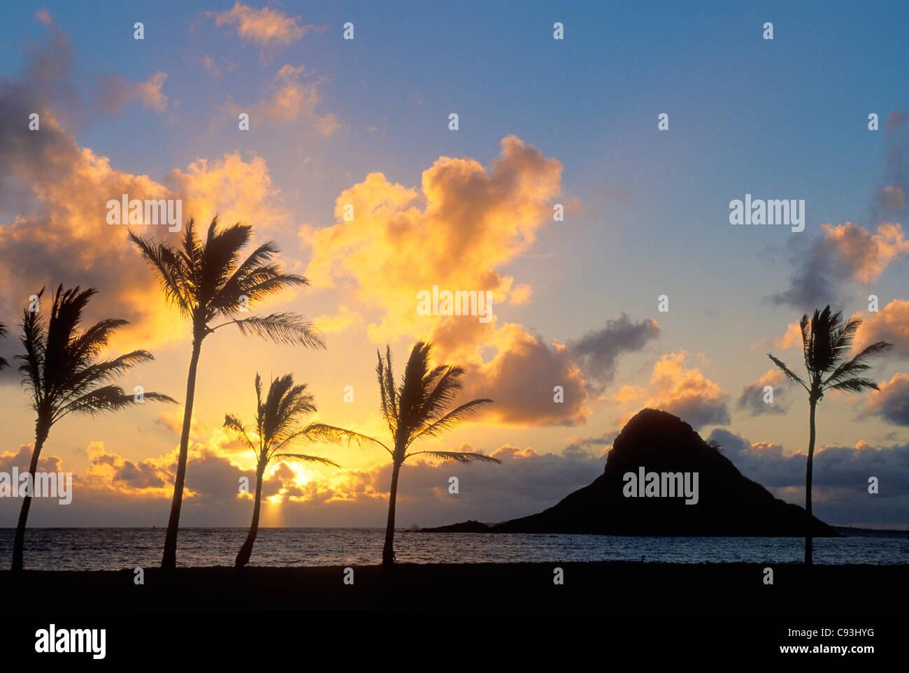Amanecer y Mokoli'i ('isla Sombrero chino'), con cocoteros; Kualoa Condado Beach Park, el Windward Oahu, Hawaii. Foto de stock
