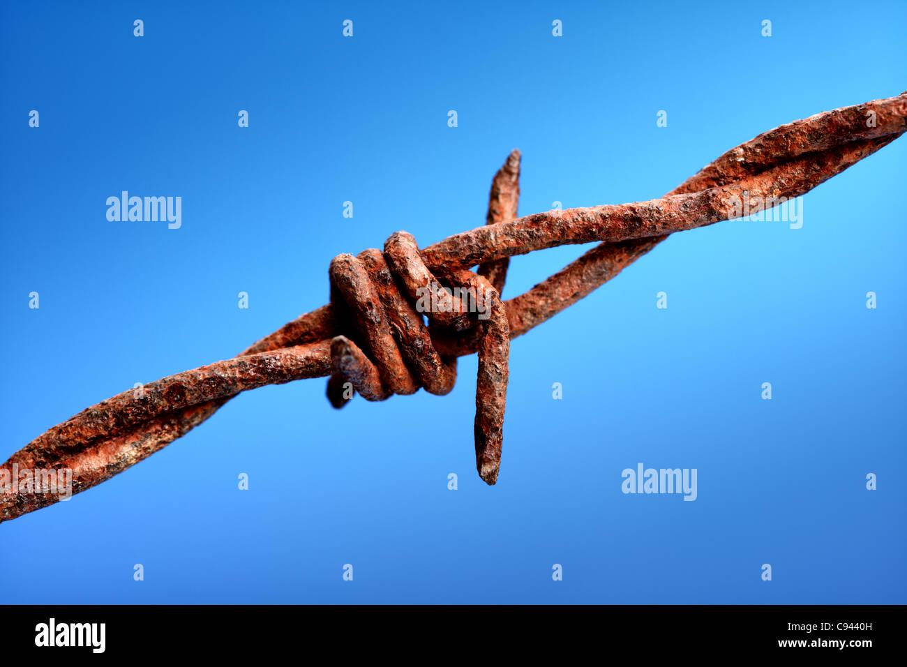 Alambre de púas oxidado Foto de stock