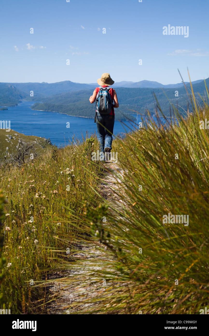 Una mujer senderismo en el monte Farrell en Tasmania en el altiplano occidental. Tullah, Tasmania, Australia Foto de stock