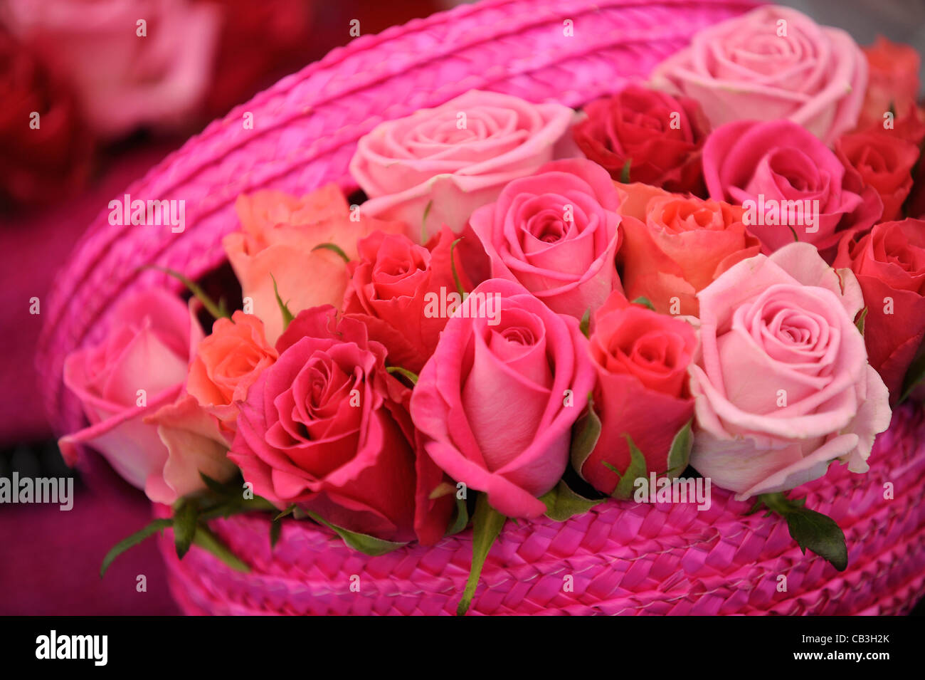 Red Roses In Basket Imágenes De Stock & Red Roses In Basket Fotos De ...