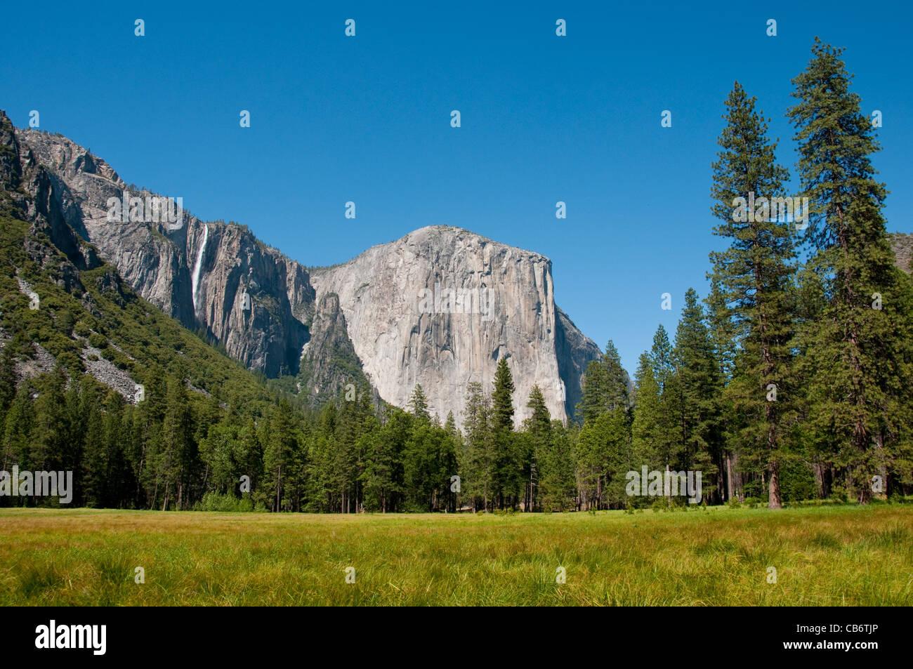 El Capitan, pradera, y la cinta cae en el valle de Yosemite El Parque Nacional Yosemite en California Imagen De Stock