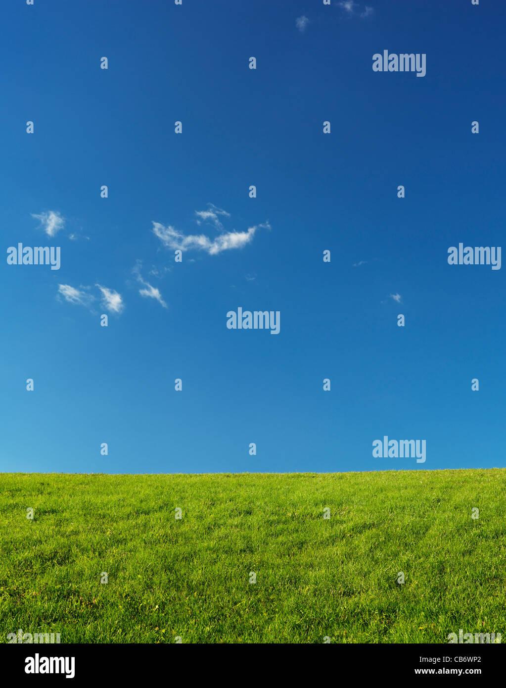 Verde paisaje de pastizales bajo el azul claro del cielo iluminado por la luz solar. Naturaleza telón de fondo. Imagen De Stock