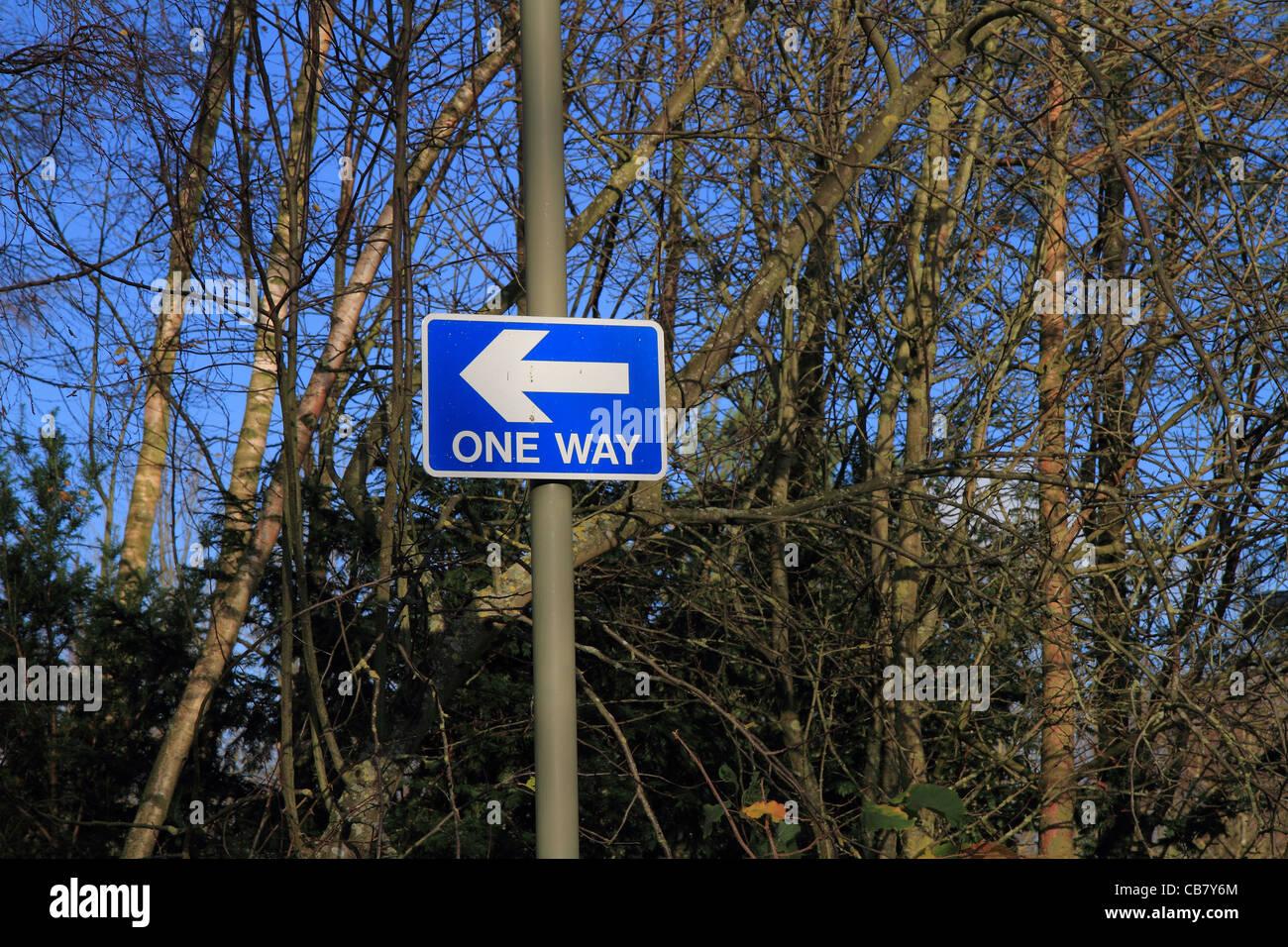 Una manera firmar flecha blanca sobre fondo azul. Imagen De Stock