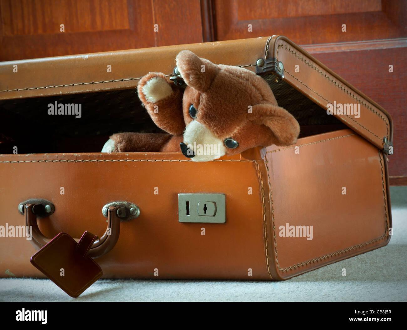 Teddy Bear vacaciones empacadas en la maleta de cuero de los años 60 staycation llegó listo viajar juguetes moviéndose casa móvil nuevo hogar Foto de stock