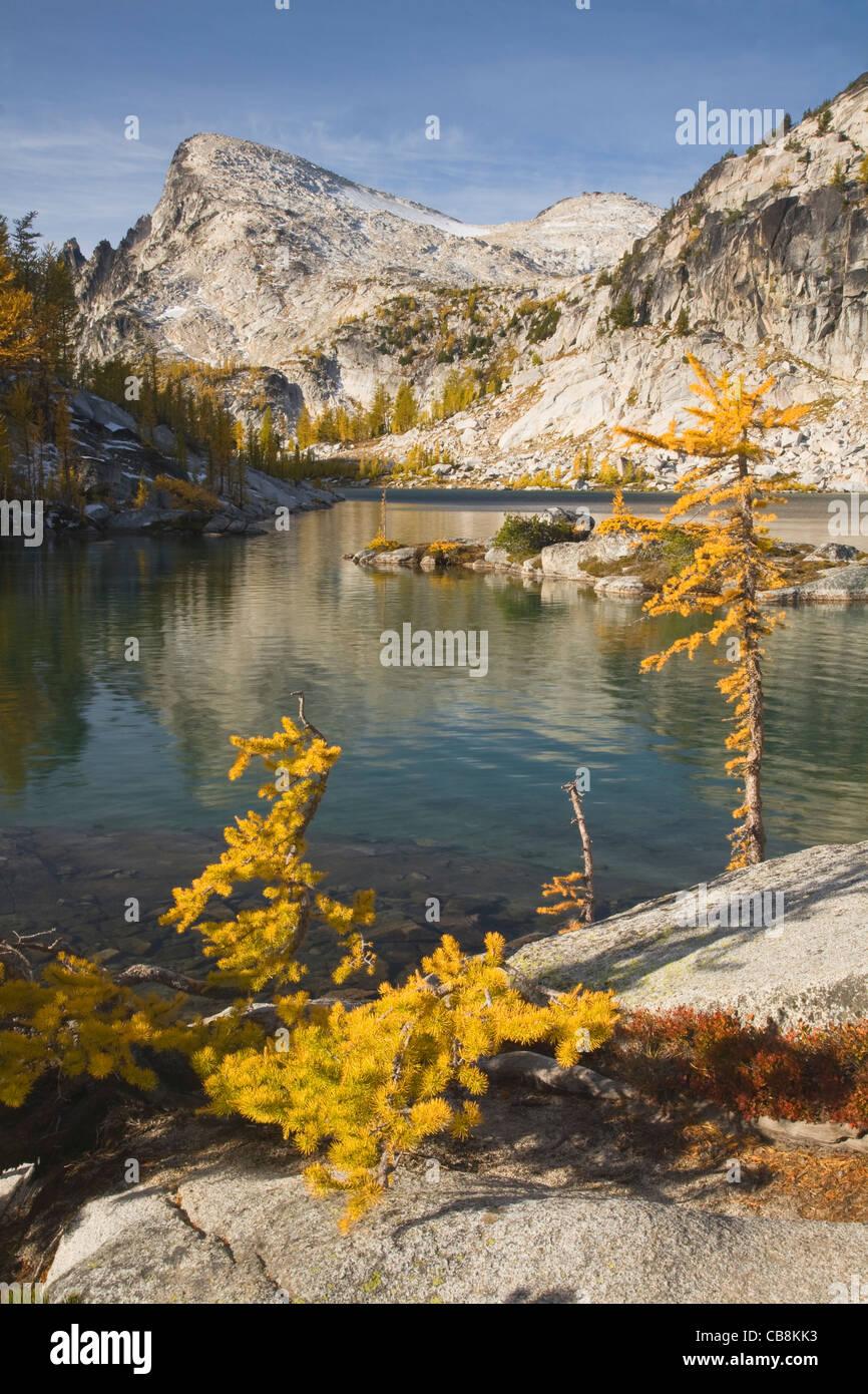 Color en el otoño entre los alerces creciente en torno a la perfección el lago con poco de Annapurna en Imagen De Stock