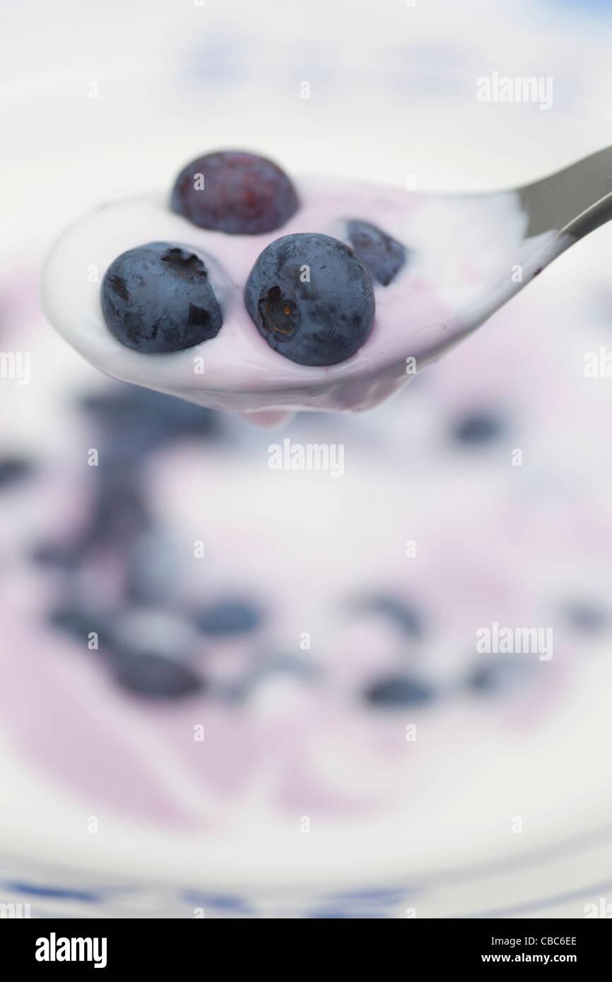 Cerca de arándanos y yogur Imagen De Stock