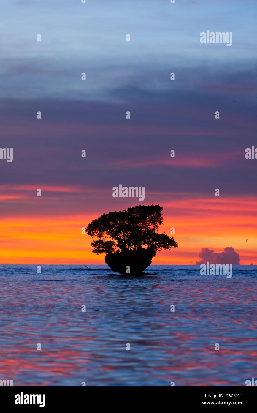 Atardecer en la bahía de Cenderawasih, la bahía de Cenderawasih, Papua Occidental, Indonesia Foto de stock