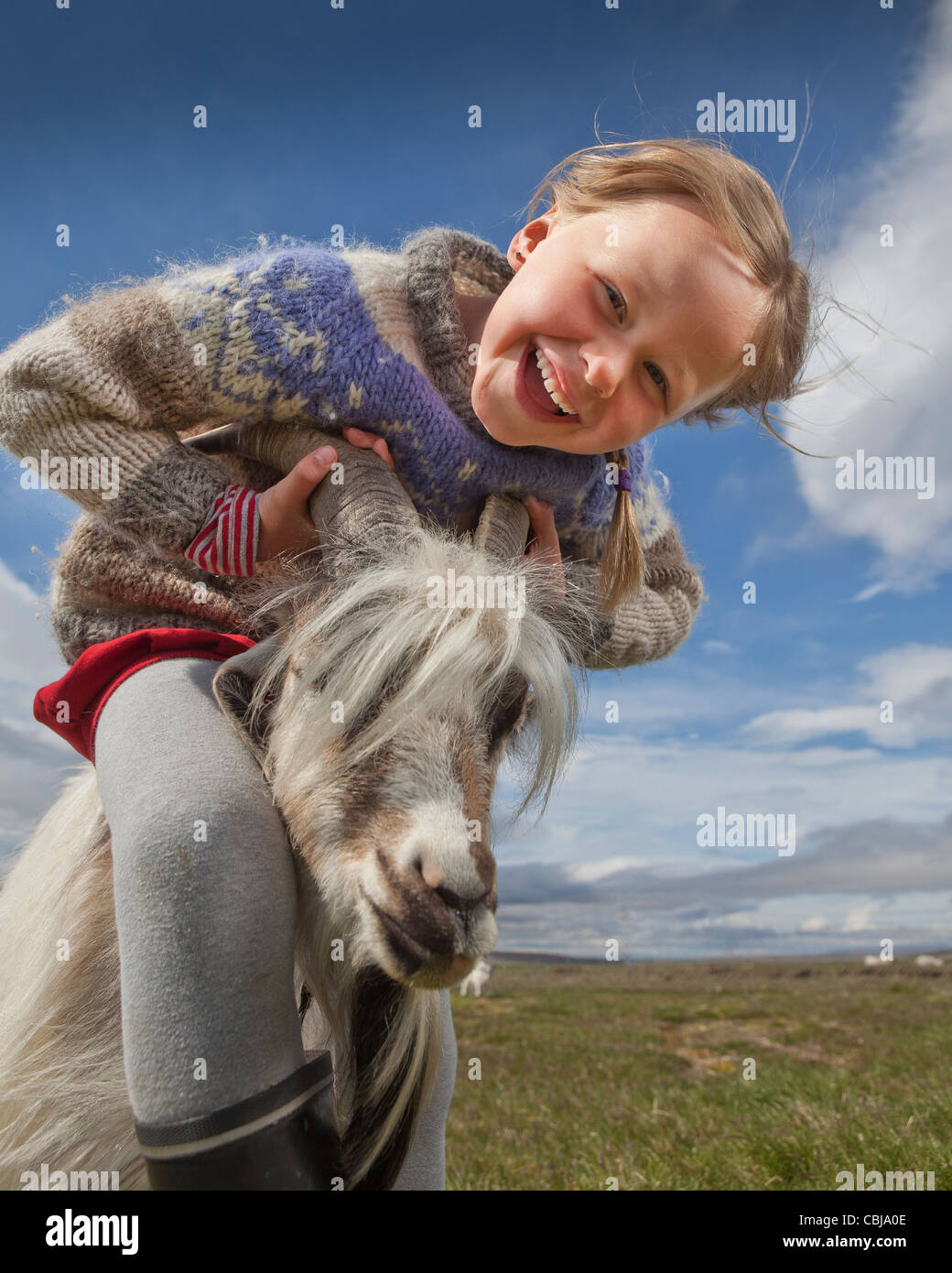 Chica con cabra, granja de cabras, IslandiaFoto de stock