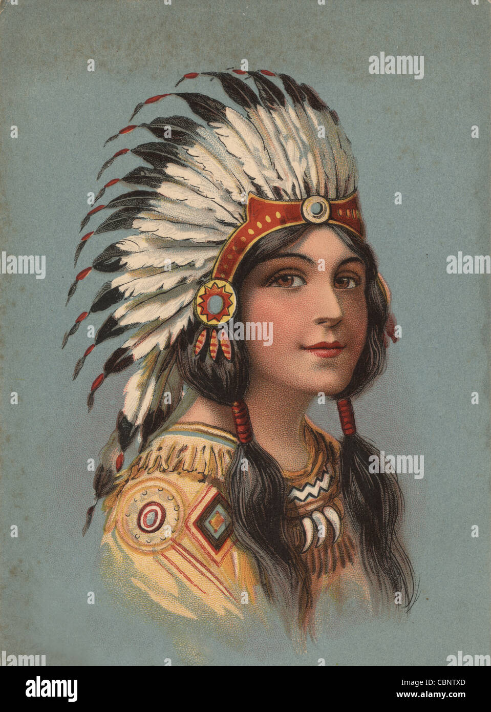 Native American Indian Beauty Imagen De Stock