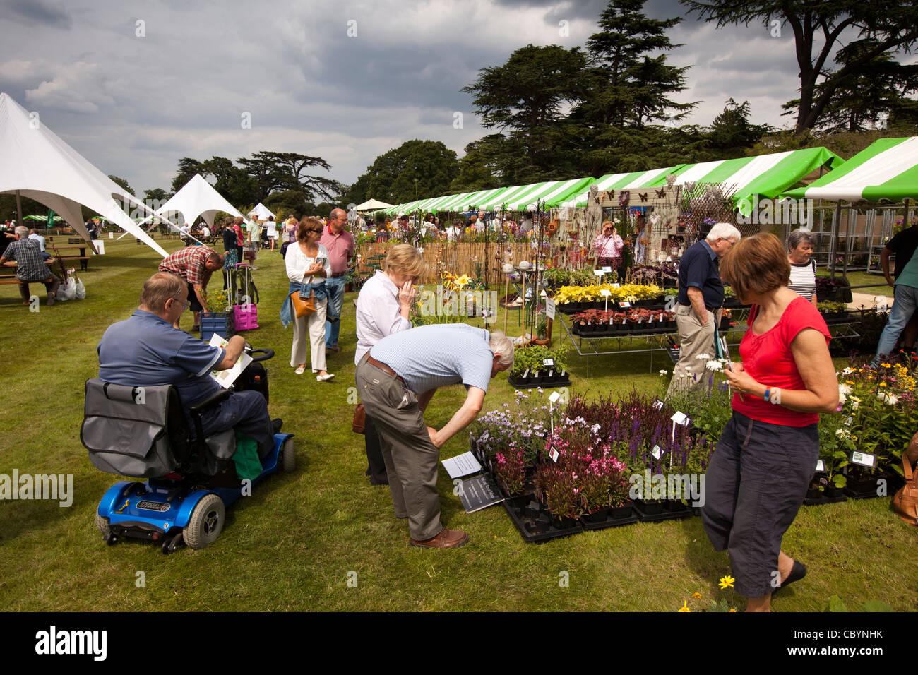 Reino Unido, Inglaterra, Bedfordshire, Woburn Abbey Garden Show, visitantes en busca de la planta se cala Foto de stock