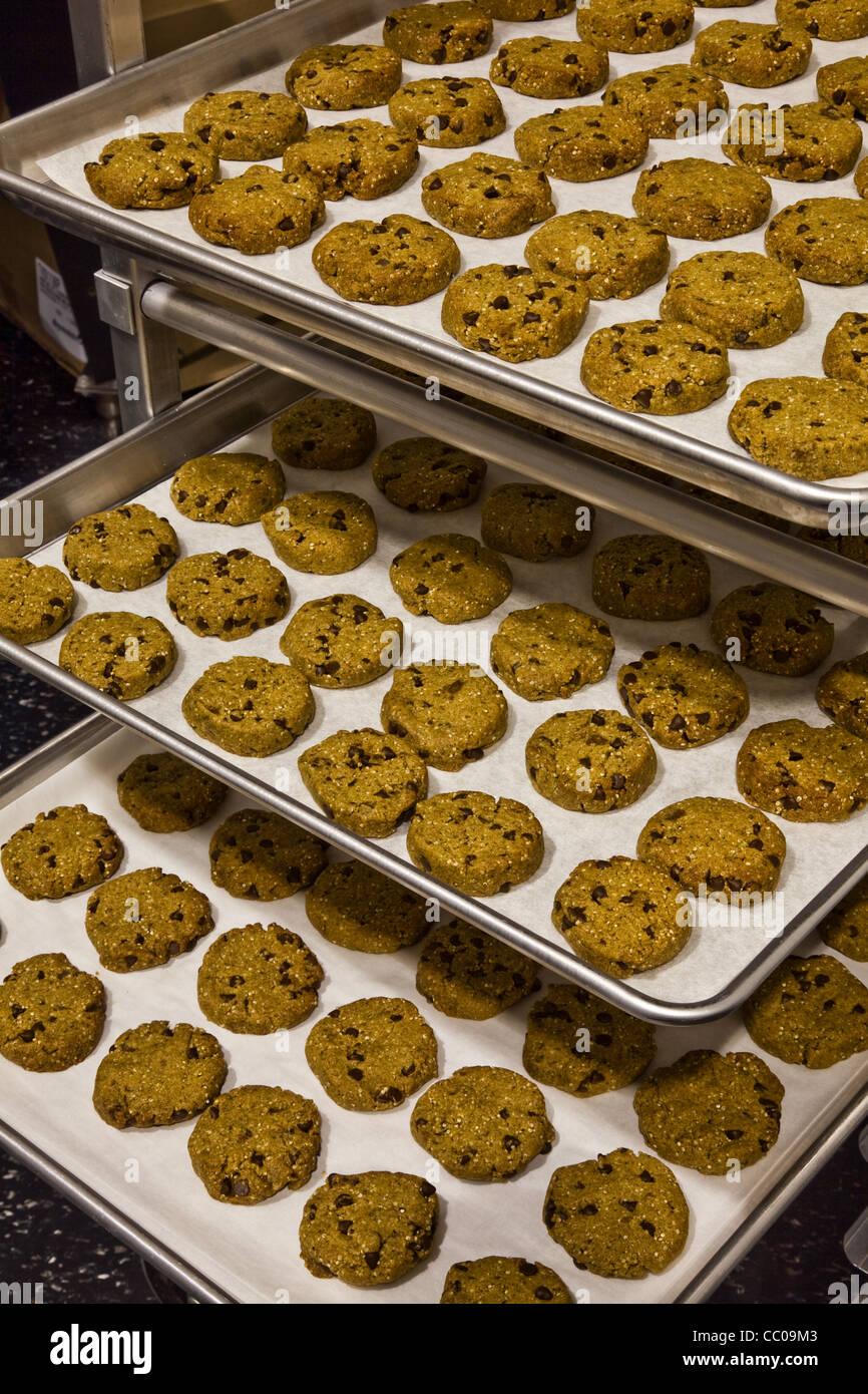 Sin Gluten cookies colocados sobre bandejas para hornear Foto de stock