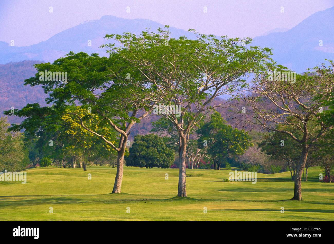 México, Oaxaca, Huatulco, Bahía Tangolunda, campo de golf Foto de stock