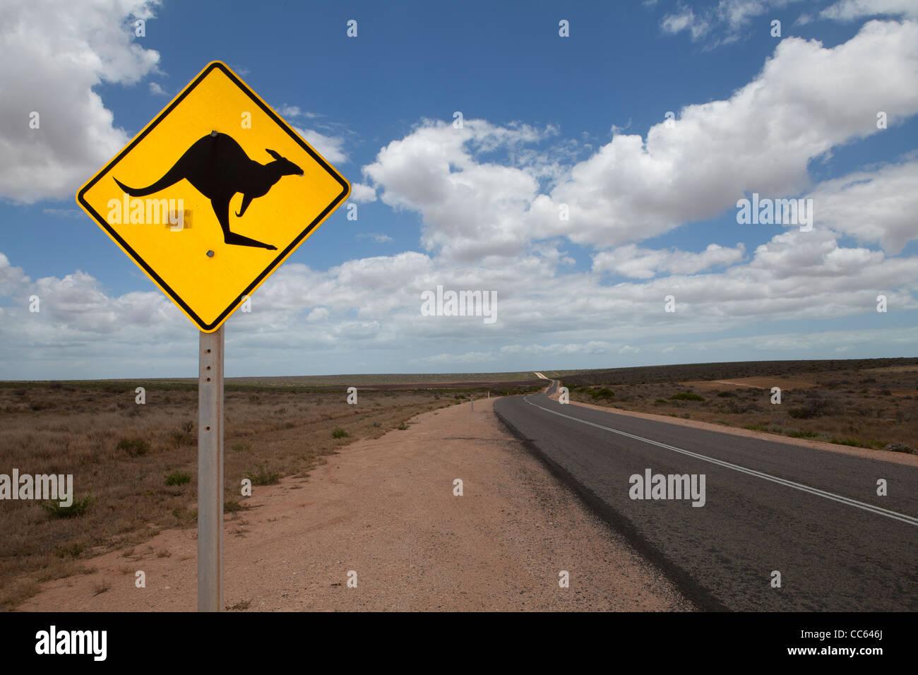 Amarillo y negro icónico kangaroo road firmar en un outback road, en el oeste de Australia. Imagen De Stock