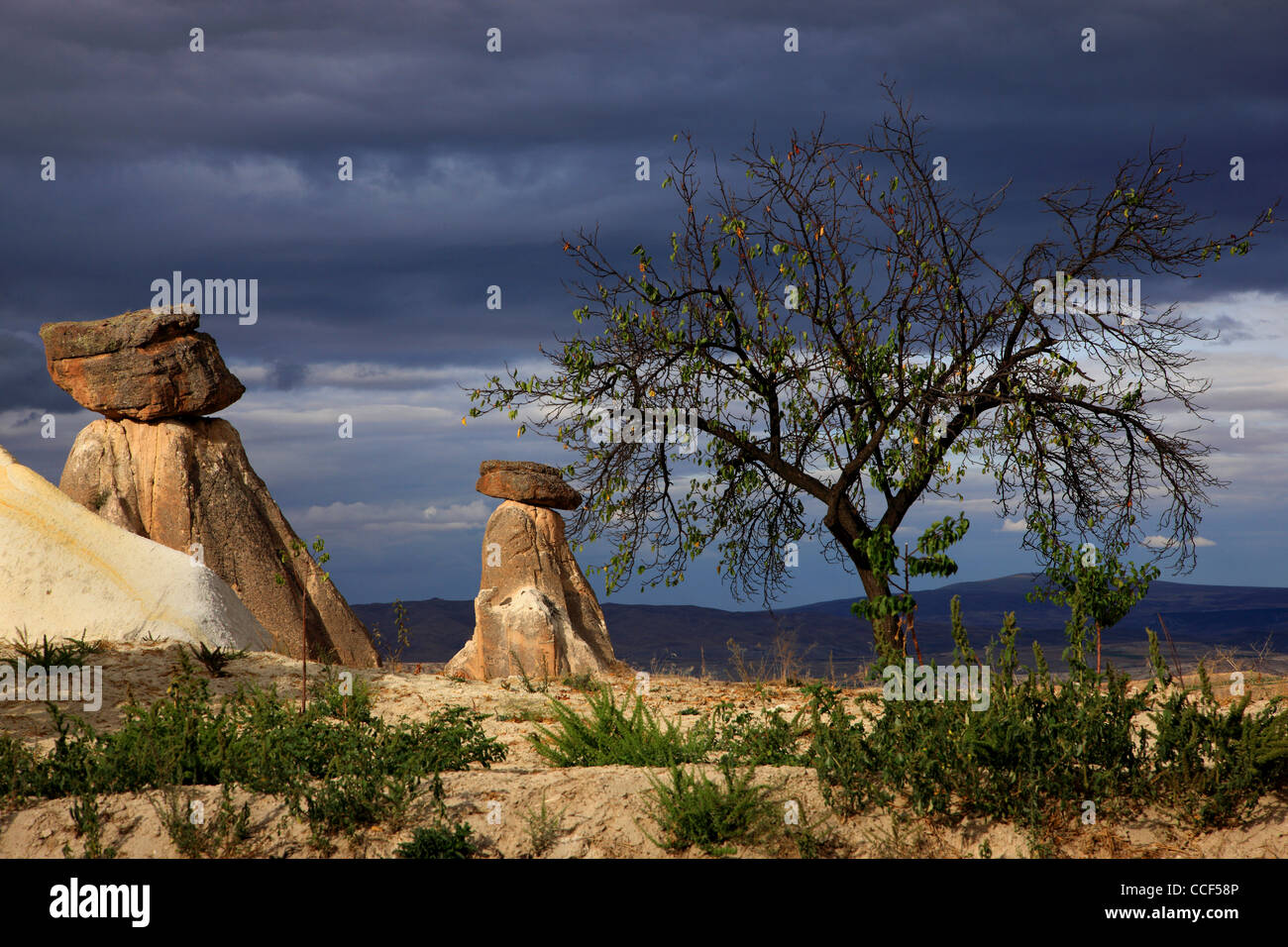 Típico paisaje Cappadocian, cerca de Urgup, en la carretera de Goreme. Nevsehir, Anatolia, Turquía Imagen De Stock
