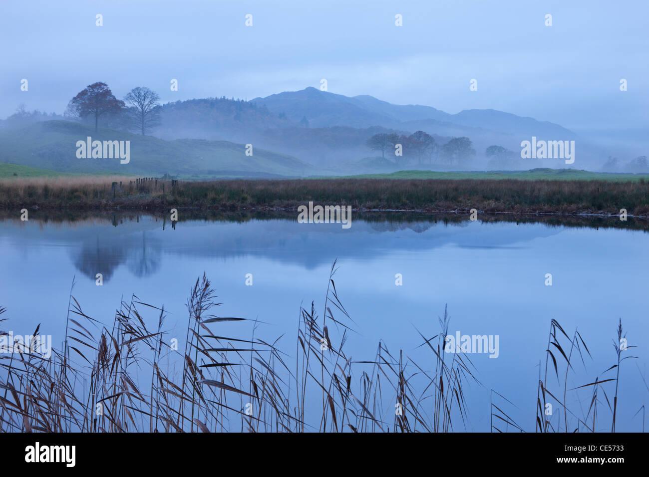 Brathay río en una mañana brumosa cerca de Elterwater, Lake District, Cumbria, Inglaterra. Otoño Imagen De Stock