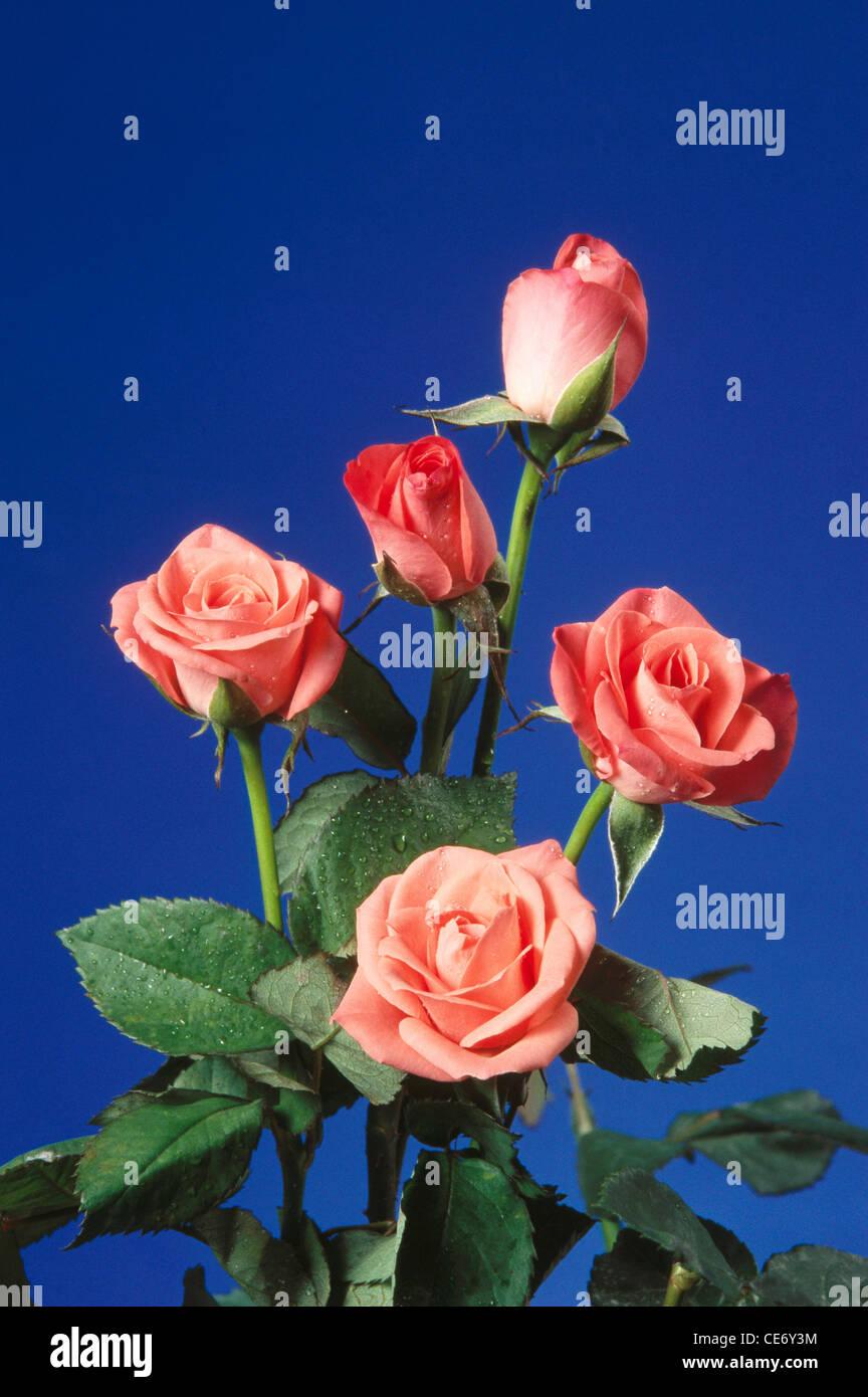 Arreglo Floral Artificial Cinco Rosas Rosas Hojas Verdes