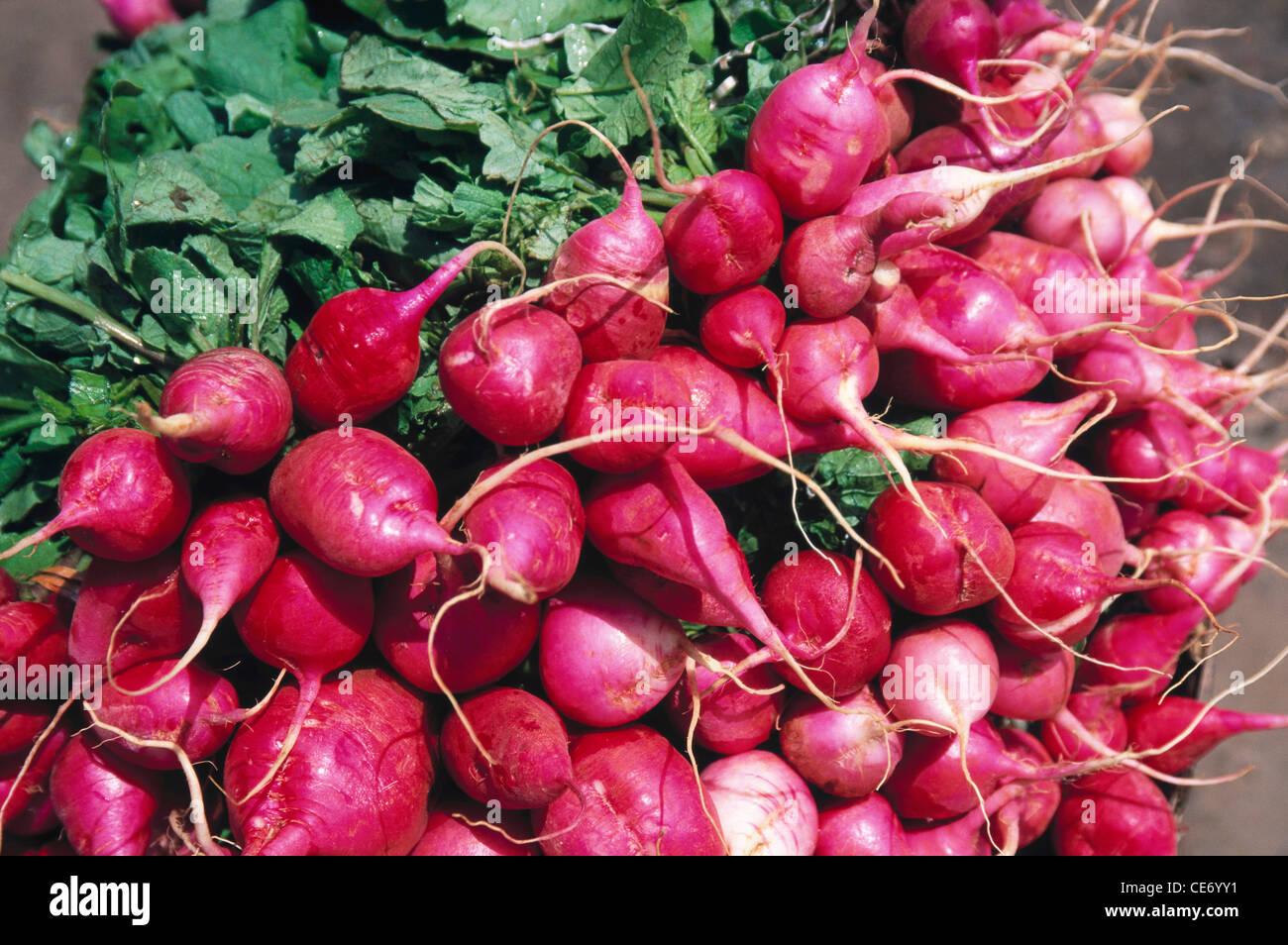 MMN 83851 : Hortalizas montón de nabo rojo Imagen De Stock