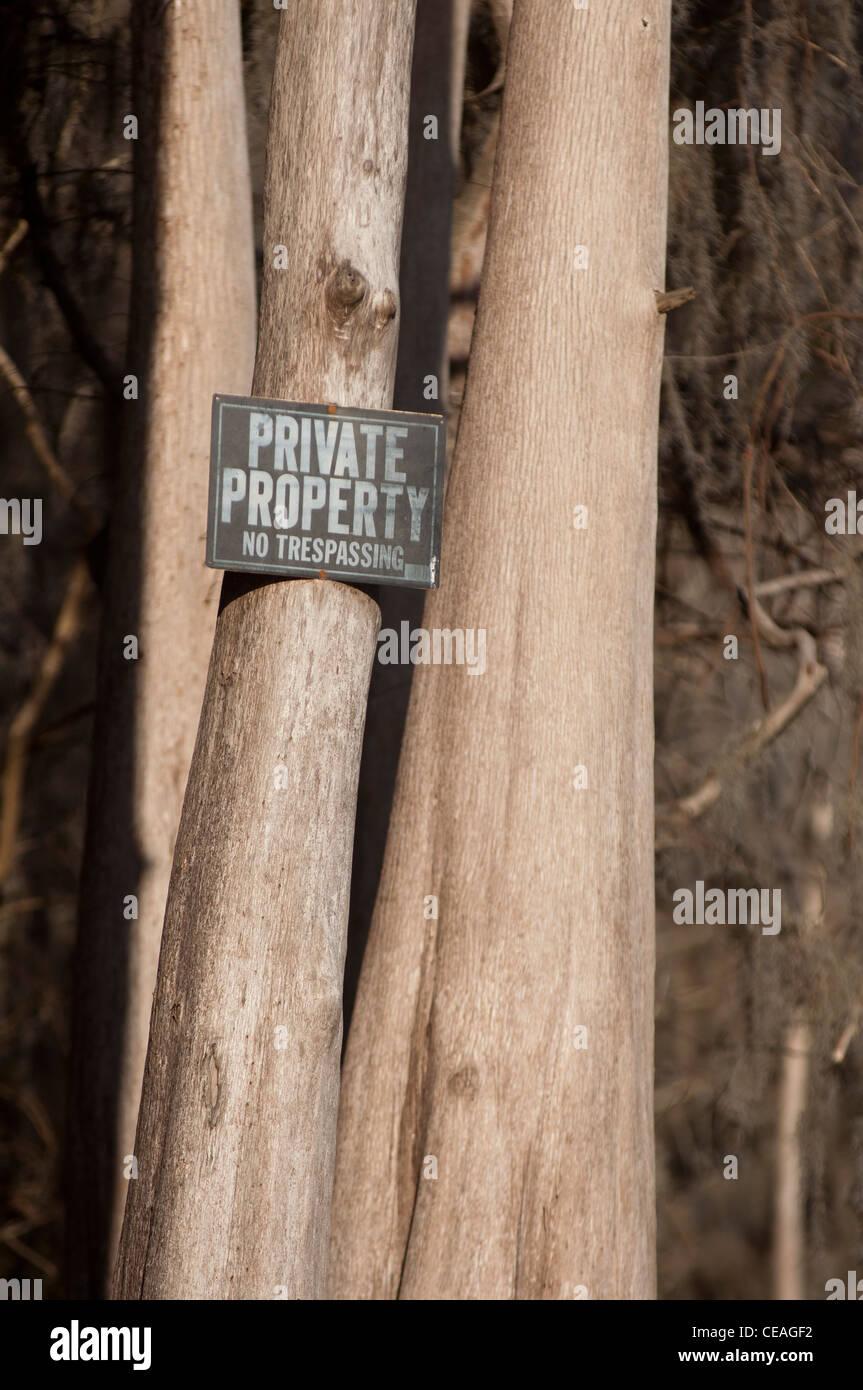 Signo de la propiedad privada en el tronco de sólido, de ciprés calvo, Taxodium distichum cerca del río Imagen De Stock
