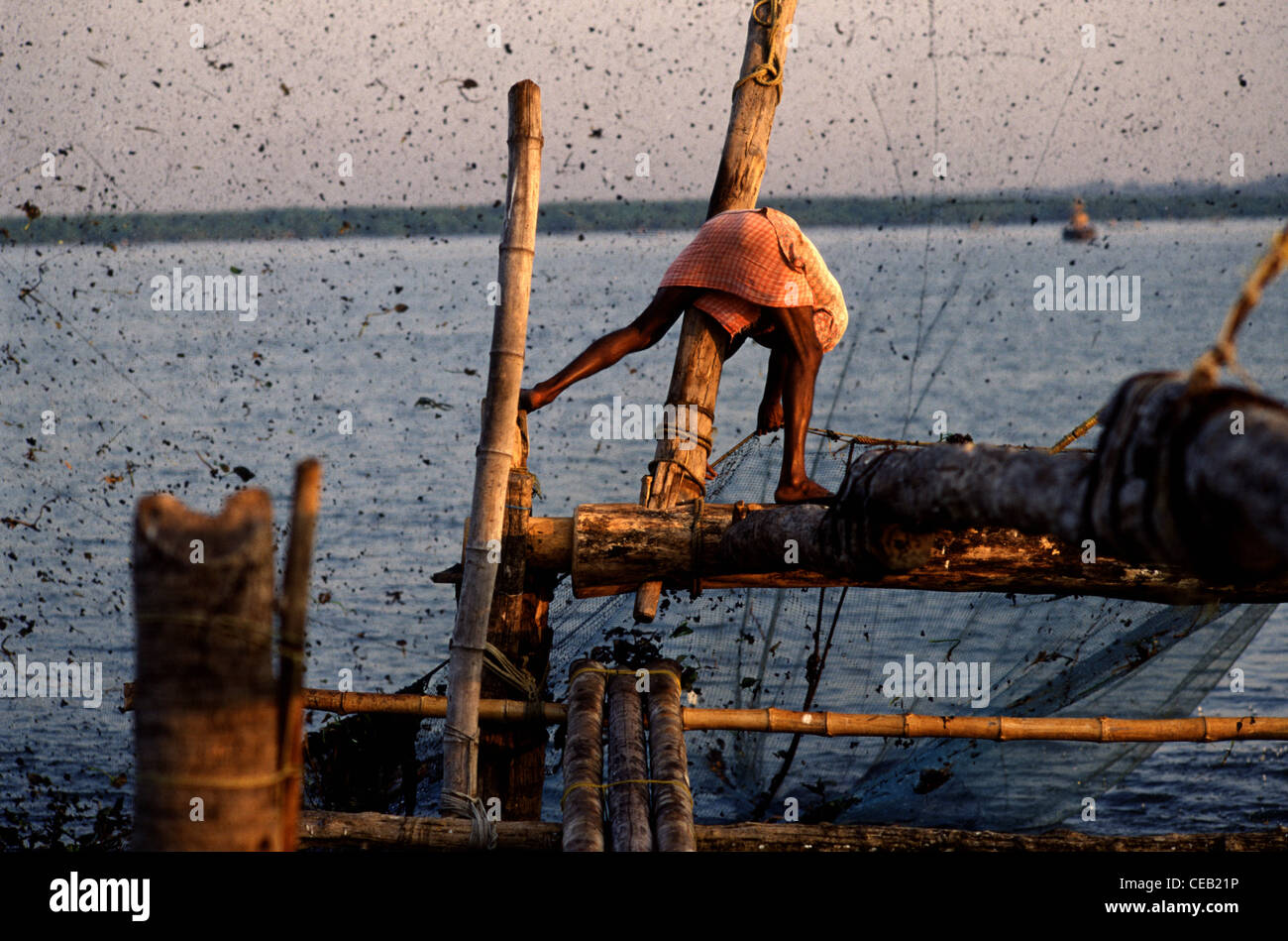 Un pescador jala un chino tradicional net a ordenar la pesca del día en Kochi también conocido como Cochin Imagen De Stock