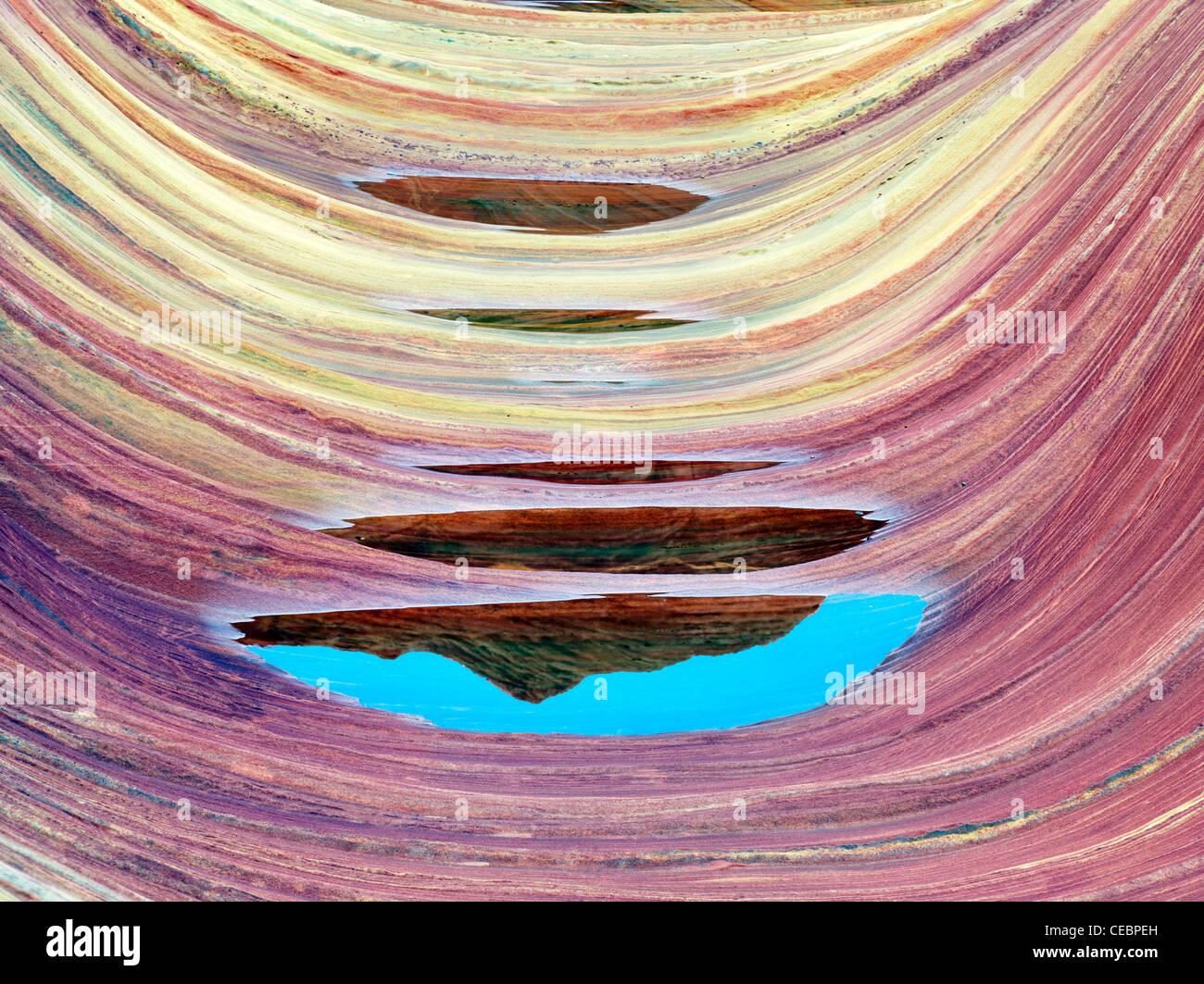 Formación Sandtone y piscina de agua en el norte de Coyote Buttes, la onda. Cañón de Paria Vermillion Imagen De Stock
