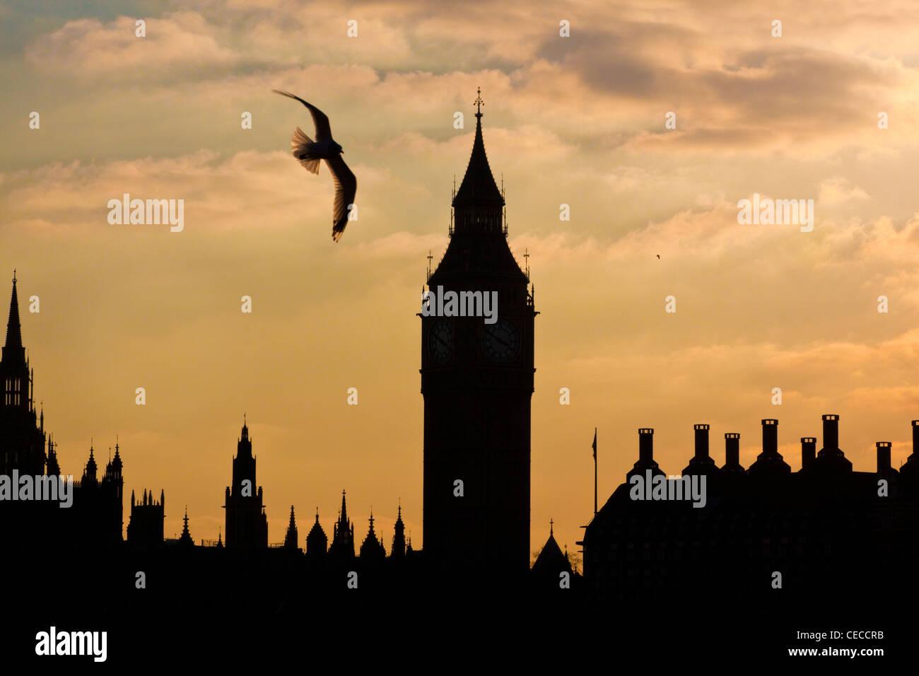 Las casas del parlamento, Big Ben, la torre del reloj y Portcullis House, Westminster, Londres Central siluetas al atardecer. Foto de stock