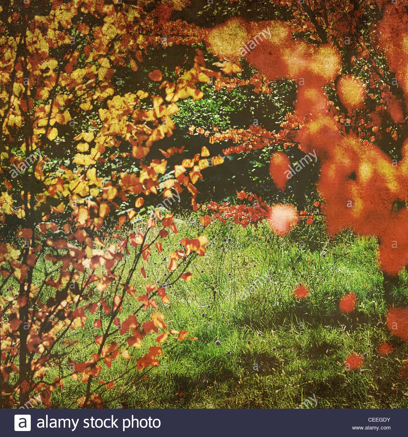 Retro colores de verano Imagen De Stock