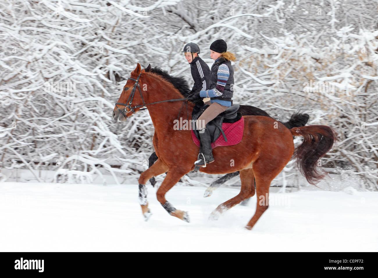 Dos muchacha cabalgatas en el bosque de invierno Foto de stock