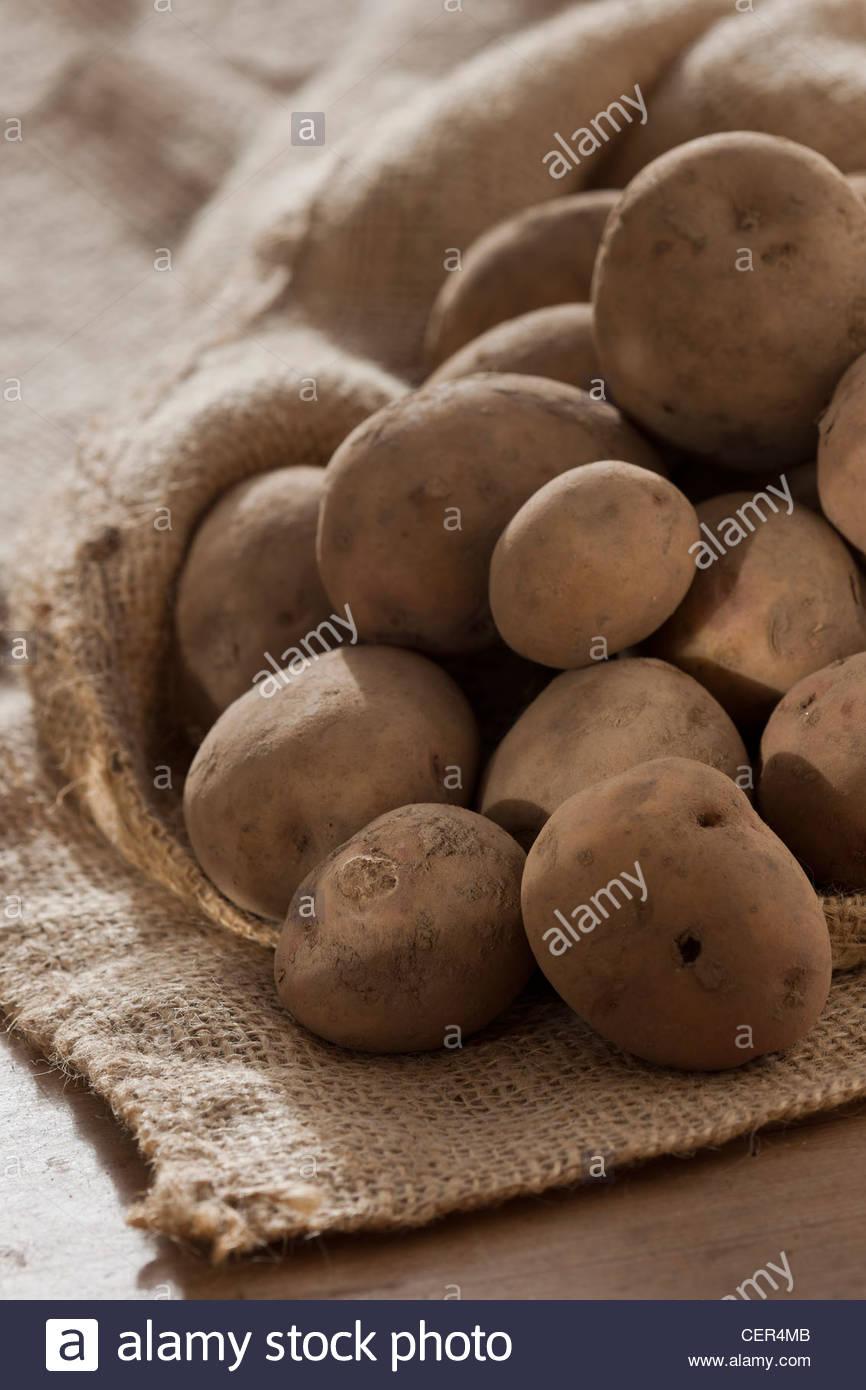 Semilla de Papa Cara papas saco invierno vegetales saqueos enero orgánicos cultivados en casa guardada la cosecha Imagen De Stock
