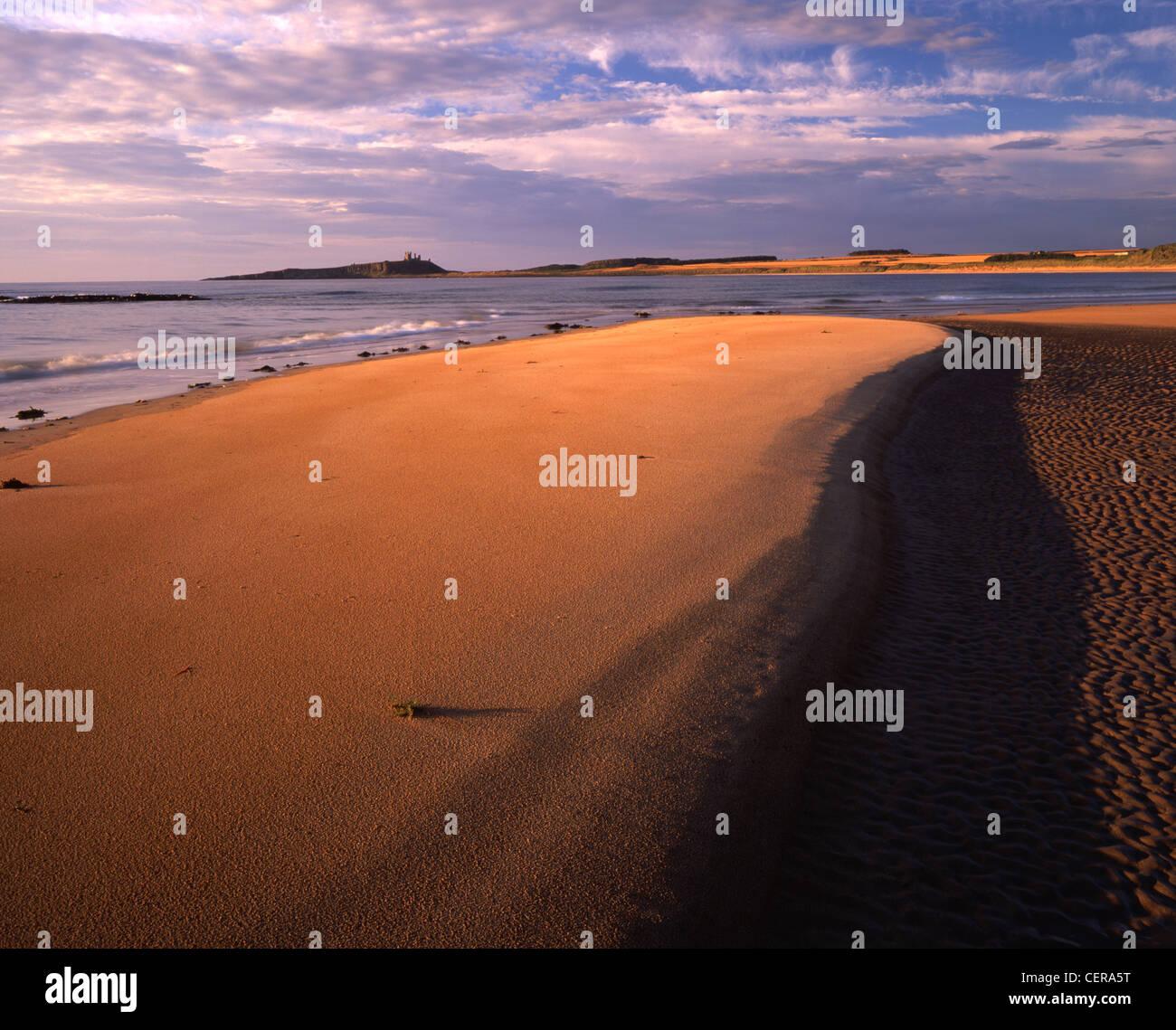 Las ruinas del castillo de Dunstanburgh constituyen el telón de fondo perfecto para las hermosas arenas de Imagen De Stock
