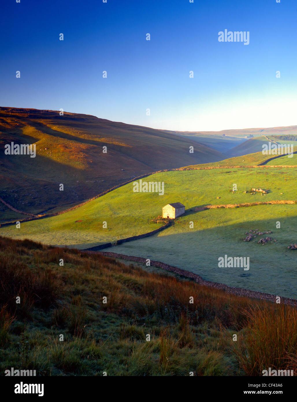 Un granero de piedra y paredes de Wharfedale drystone tradicional en los valles de Yorkshire. Imagen De Stock
