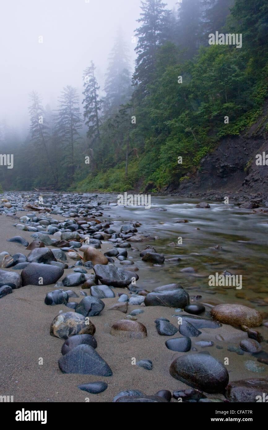 Carmanah Creek que fluye hacia el océano a lo largo del sendero de la costa oeste de la isla de Vancouver, British Foto de stock