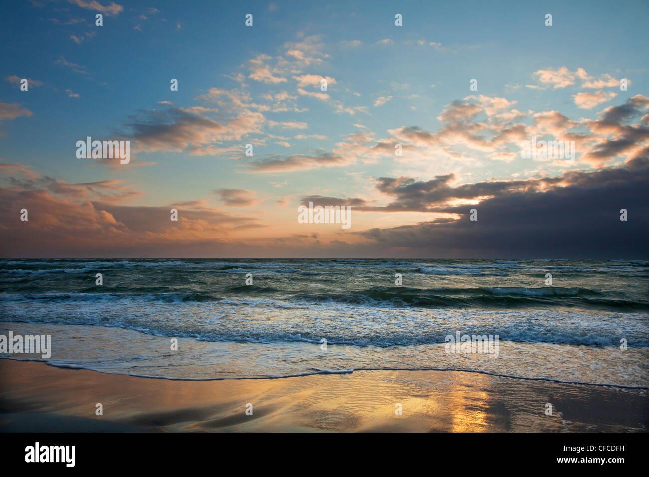 Darss playa oeste al anochecer, Fischland-Darss-Zingst, Mar Báltico, Mecklenburg-West Pomerania, Alemania Foto de stock