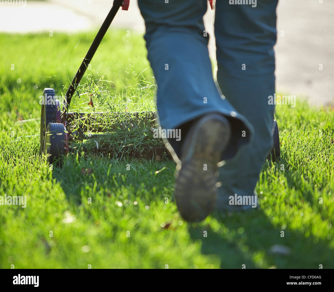 Mujer cortar el césped con la cortadora de césped respetuosos con el medio ambiente. Winnipeg, Manitoba, Imagen De Stock