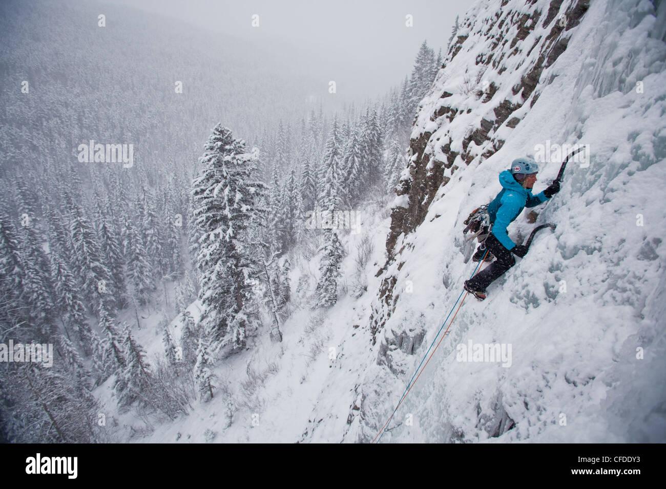 Una mujer fuerte, escalador trepa hielo Moonlight WI4, incluso Thomas Creek, Kananaskis, Alberta, Canadá Imagen De Stock