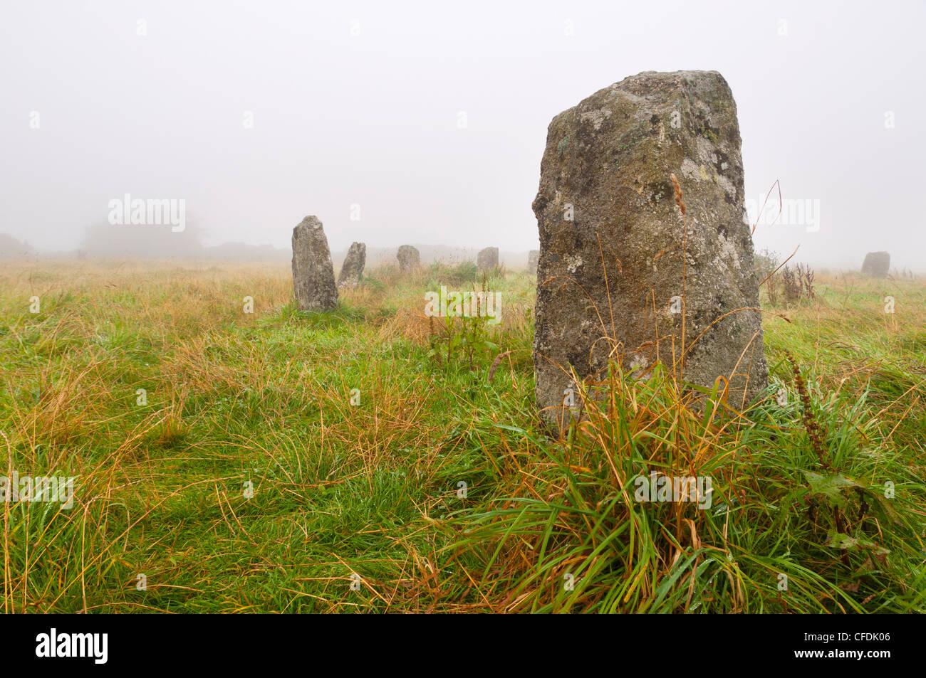 Merry doncellas stone circle, Cornwall, Inglaterra, Reino Unido, Europa Imagen De Stock
