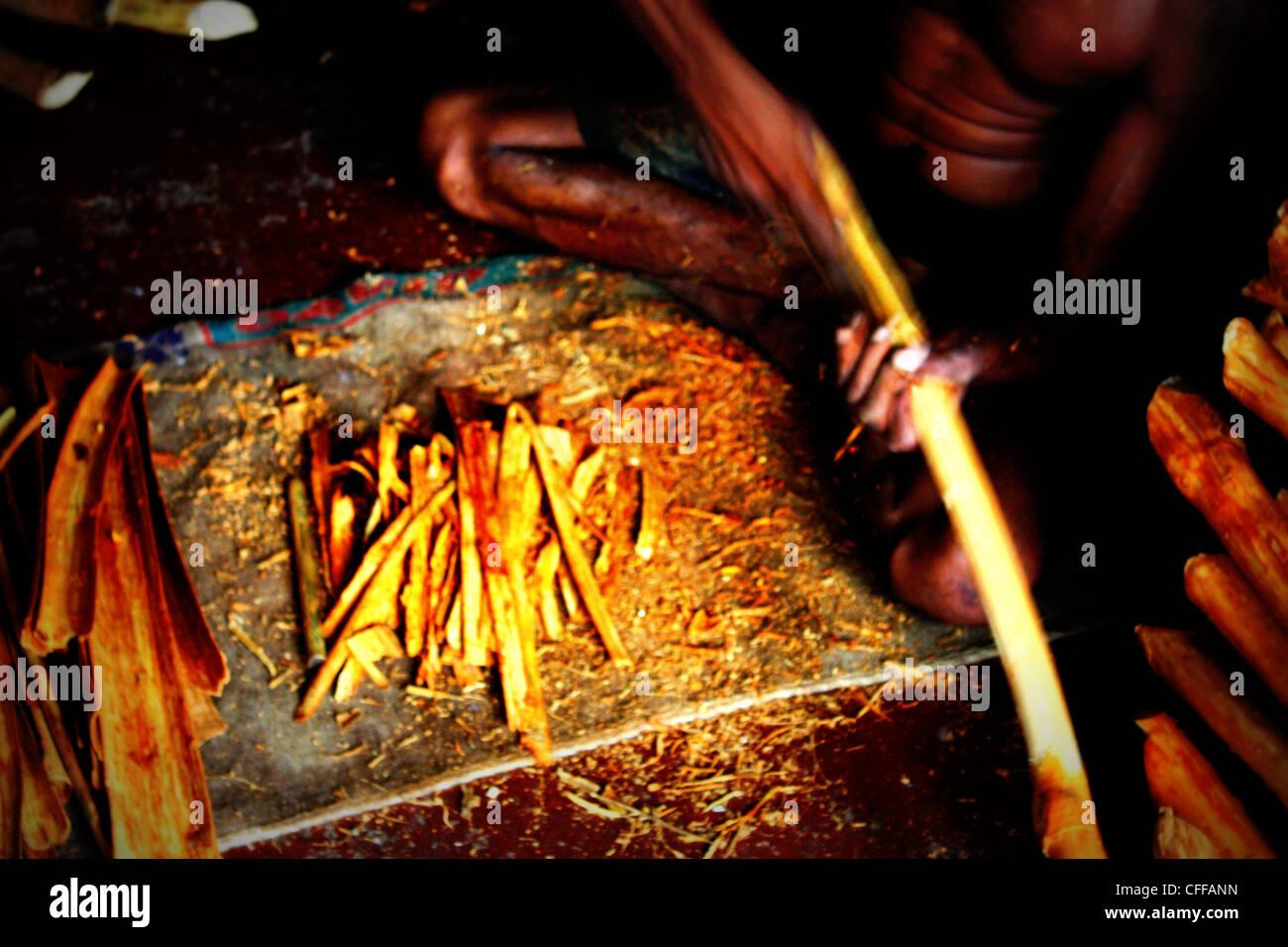 Fabricación de canela de Sri Lanka Imagen De Stock