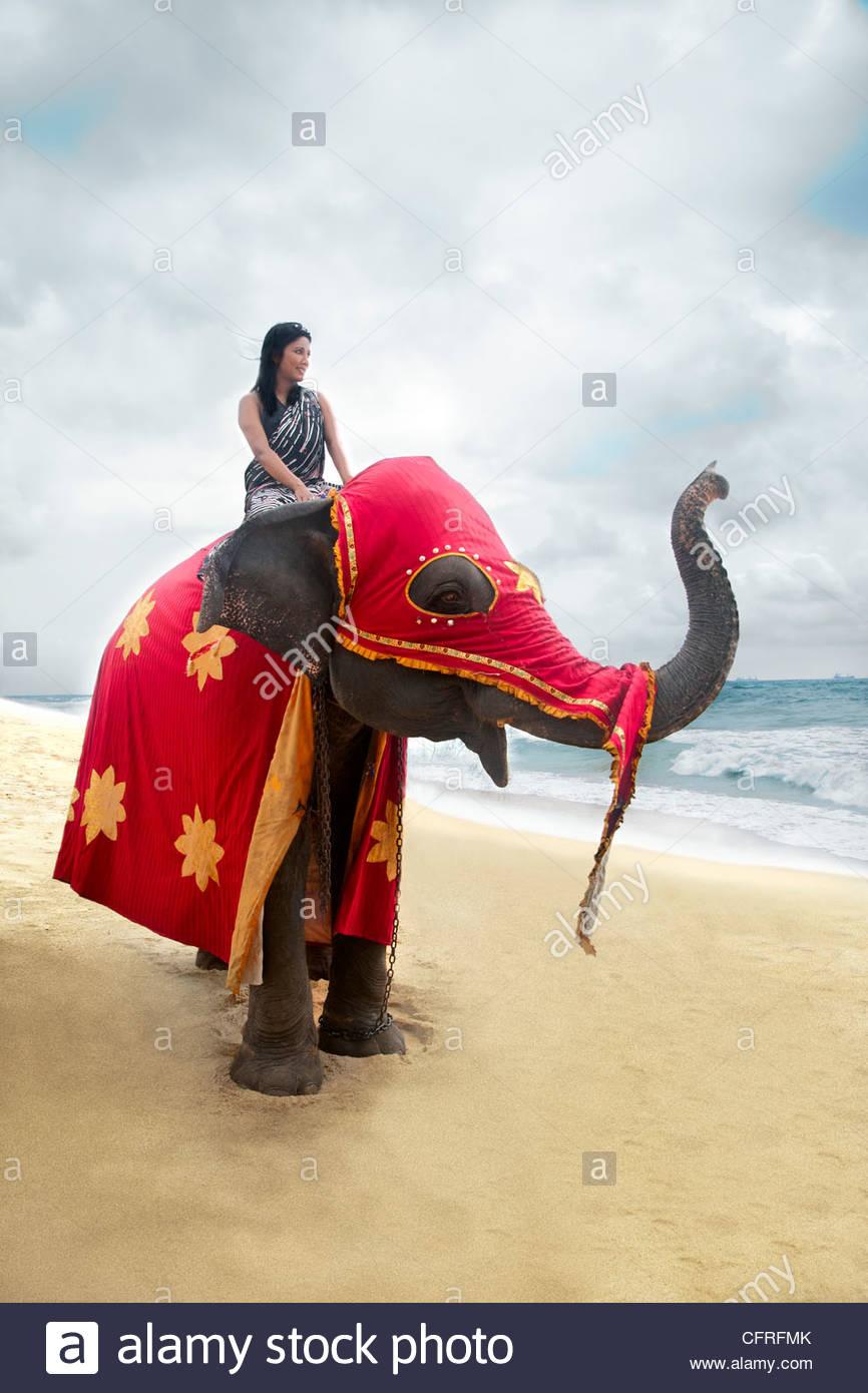 Mujer de Sri Lanka sentado sobre un elefante asiático en traje de fiesta en la playa, Sri Lanka, el Océano Imagen De Stock
