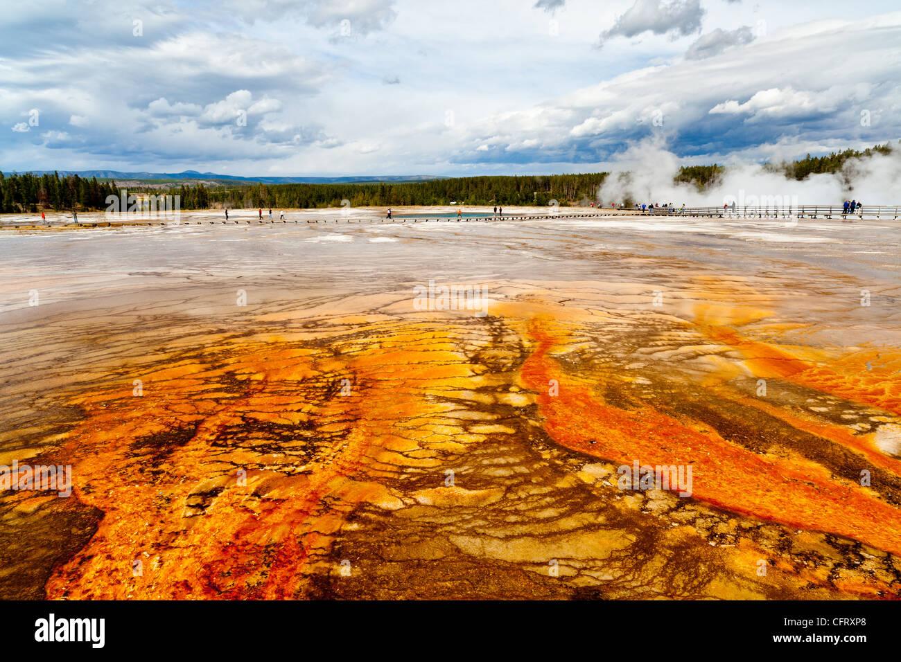 La cuenca del géiser de Midway es en realidad la parte inferior de la Cuenca del Géiser en el parque nacional de Yellowstone. ya que está situada entre las cuencas de géiser superior e inferior se hizo conocida como Midway. Durante su visita a Yellowstone en 1889, Rudyard Kipling se refirió a esta área como 'Hell's medio acre'. midway contiene uno de los mundos más grande hot springs, Grand Prismatic Spring, a unos 370 m. de diámetro. Otras notables muelles son de color turquesa e índigo muelles. aslo escuchar es excelsior geyser, que dischargres más de 4.000 galones de agua hirviendo cada minuto. Foto de stock