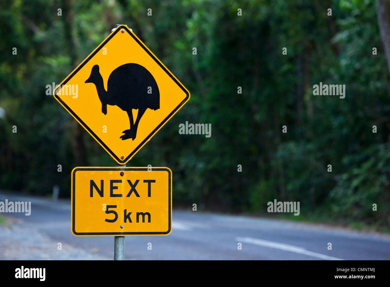 Casuario signo de cruce. Parque Nacional Daintree, Daintree, Queensland, Australia Imagen De Stock