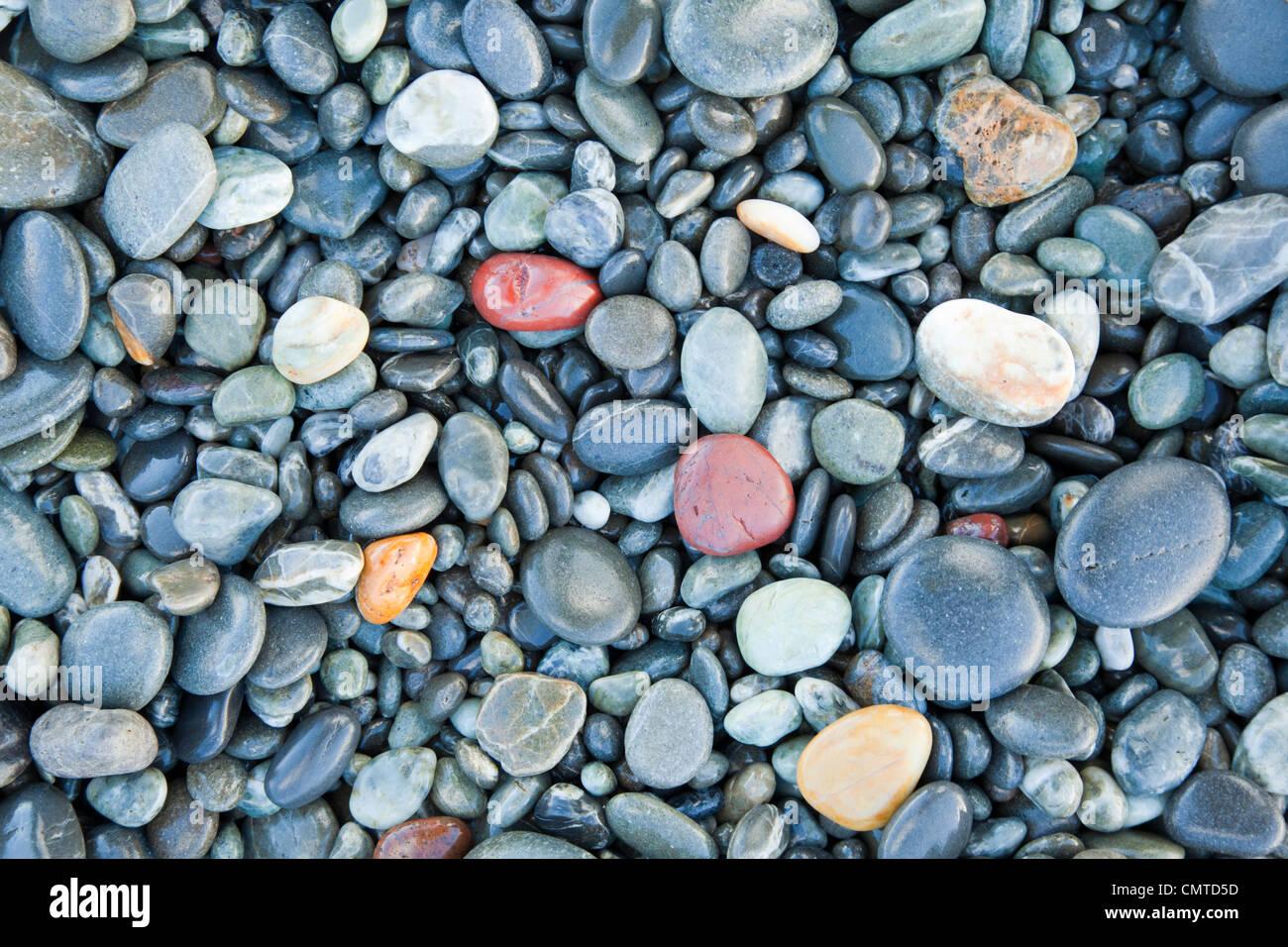 La playa de guijarros en Birdlings Planas, Canterbury, Nueva Zelandia, se observó para pequeñas ágatas Imagen De Stock