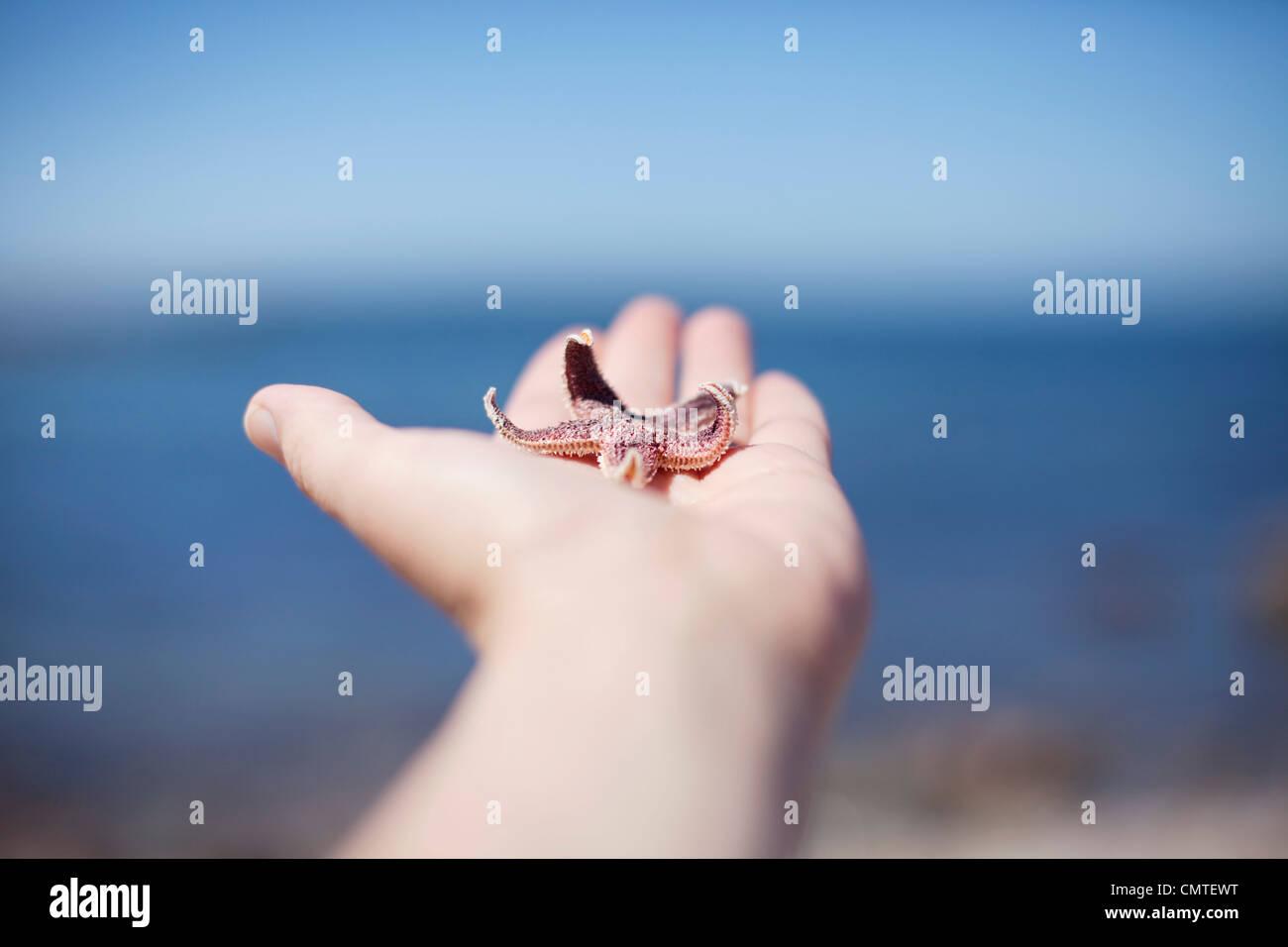 Mano humana sosteniendo un pez de mar Imagen De Stock