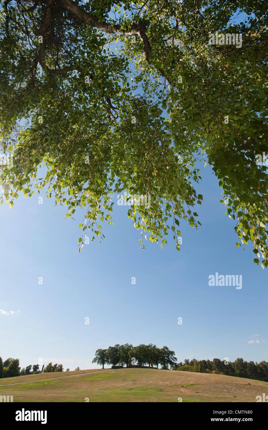 Escena idílica de park Foto de stock