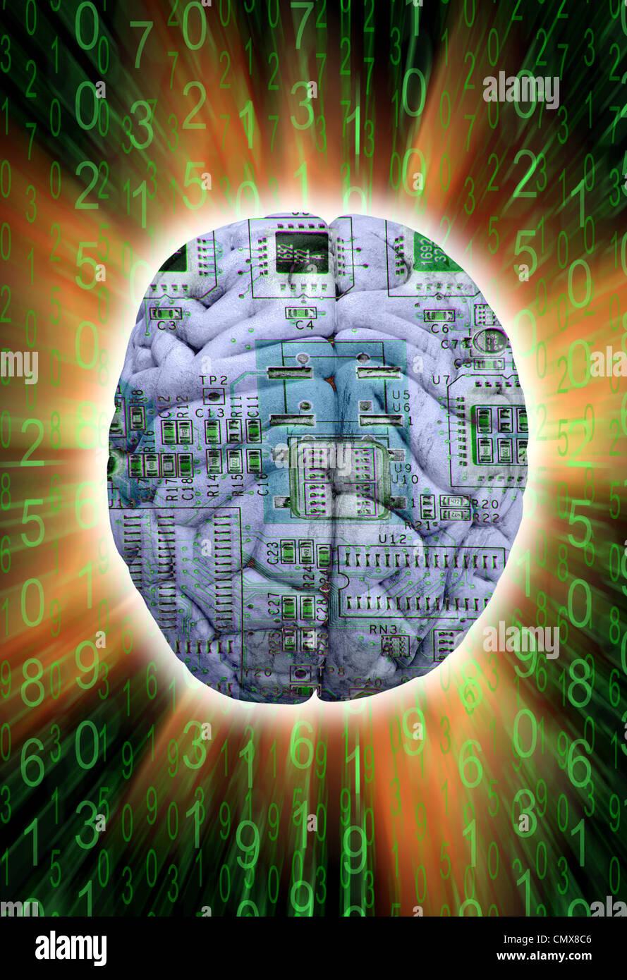 Placa de circuito en un cerebro que simboliza la inteligencia artificial. Foto de stock