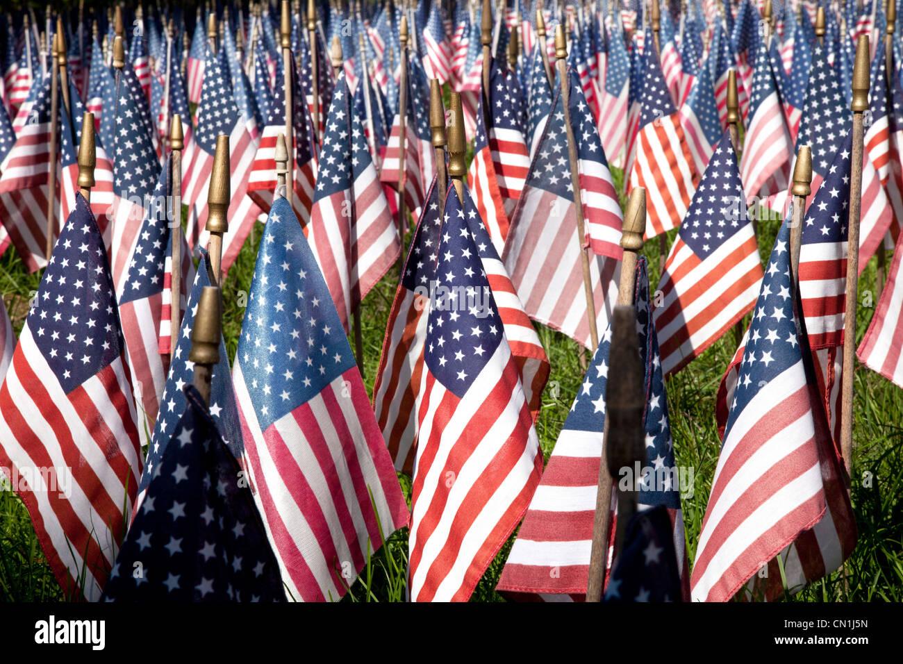 Campo de banderas americanas, Kent, Connecticut, EE.UU. Imagen De Stock