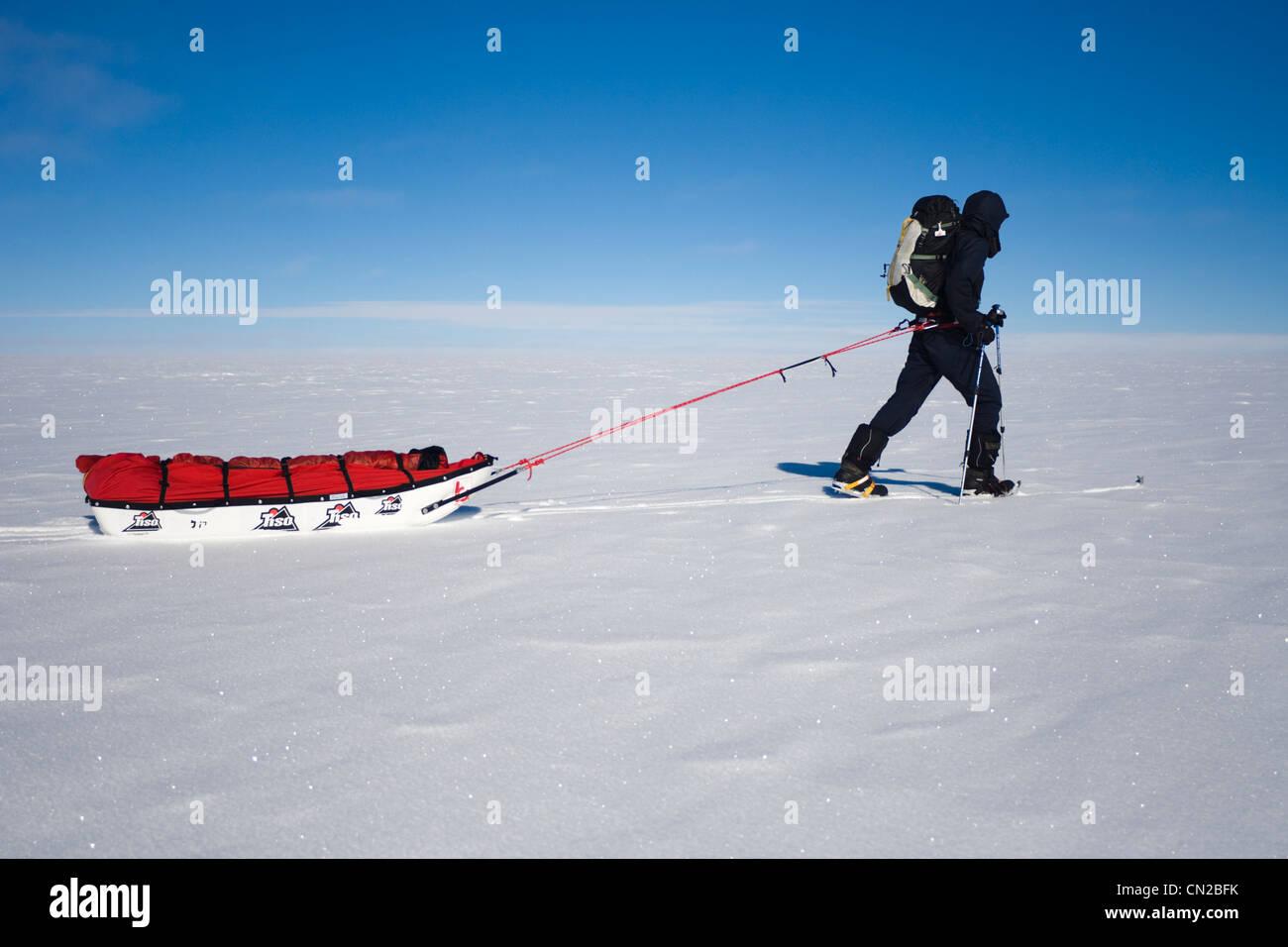 El explorador polar acarreando trineos, Groenlandia -Sr. Imagen De Stock